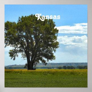Kansas Posters