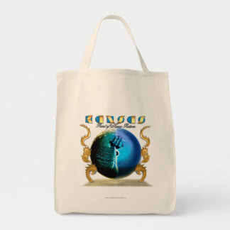 KANSAS - Point of Know Return (2007) Tote Bags