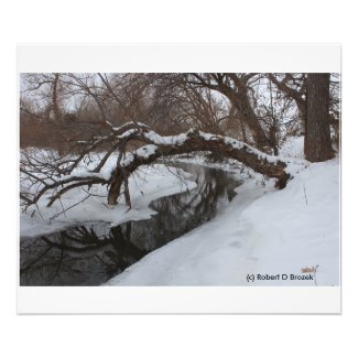 Kansas Snowy Creek PHOTO ENLARGEMENT