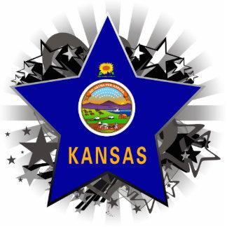 Kansas Star Cut Out