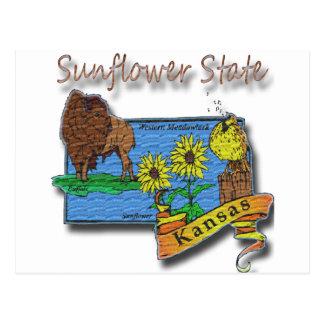 Kansas Sunflower State  Lark Sunflower Buffalo Postcard