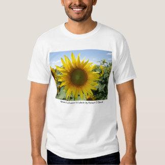 Kansas Sunflower Tee Shirt