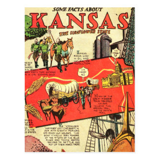 Kansas the Sunflower State Postcard