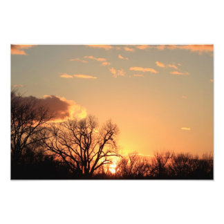 Kansas Tree silhouette with cloud s Enlargement Photographic Print