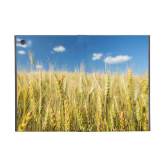 Kansas Wheat Case For iPad Mini
