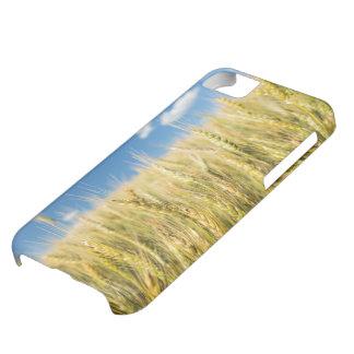 Kansas Wheat Case For iPhone 5C