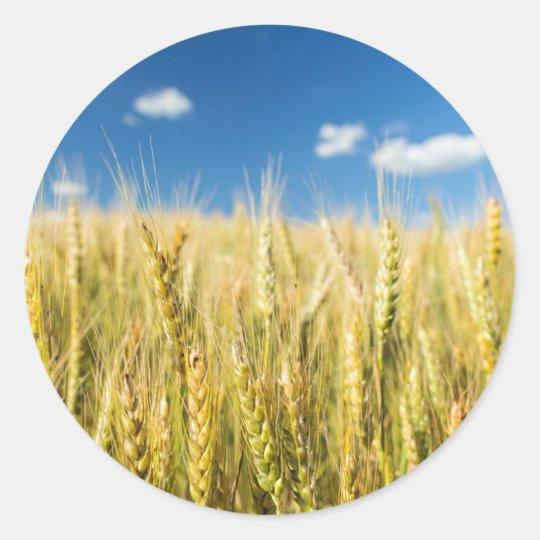 Kansas Wheat Classic Round Sticker