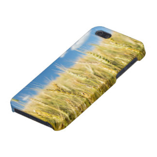 Kansas Wheat Cover For iPhone SE/5/5s