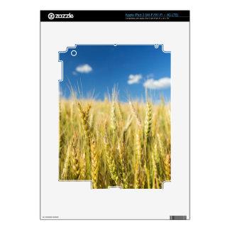 Kansas Wheat Decals For iPad 3