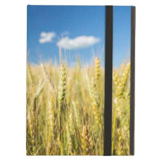 Kansas Wheat iPad Air Case