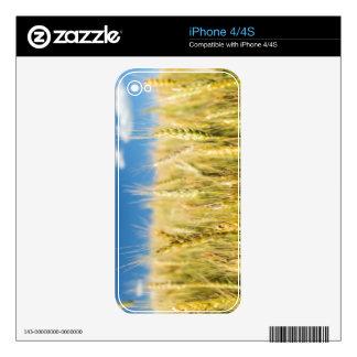 Kansas Wheat iPhone 4S Skin