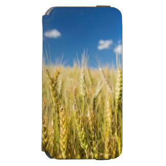 Kansas Wheat iPhone 6/6s Wallet Case
