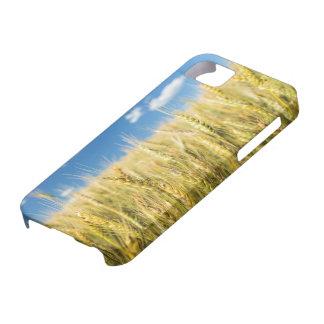 Kansas Wheat iPhone SE/5/5s Case