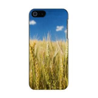 Kansas Wheat Metallic iPhone SE/5/5s Case