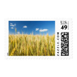 Kansas Wheat Postage Stamp