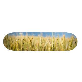 Kansas Wheat Skateboard