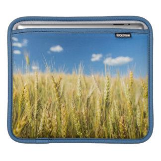 Kansas Wheat Sleeve For iPads