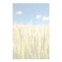Kansas Wheat Stationery