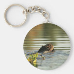 Kanuti Lake, beaver with willow branch Key Chains
