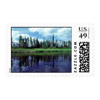 Kanuti Refuge River Postage Stamps