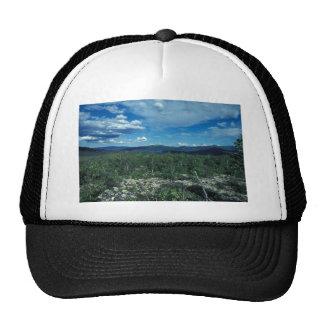 Kanuti Refuge Scrub Thickets Trucker Hat