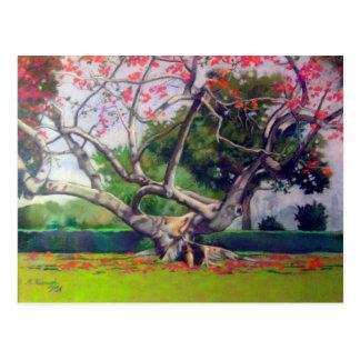 """""""Kapok Tree"""" Postcard"""