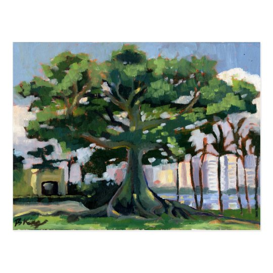 Kapok Tree postcard