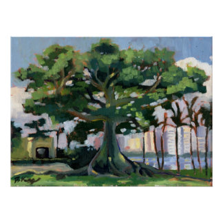 Kapok Tree poster