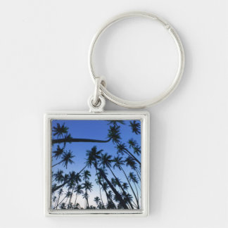 Kapuaiwa Coconut Grove, Molokai, Hawaii, USA 2 Keychain
