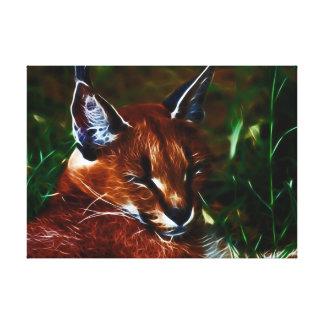 Karakul cat just so relaxed canvas print