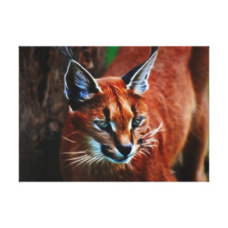 Karakul cat meooow canvas print