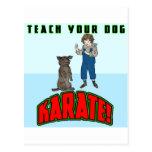 Karate 2 del perro tarjeta postal