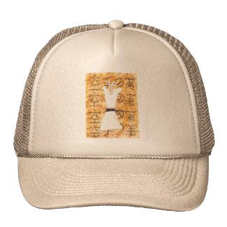 Karate Chopstick Baseball Cap Trucker Hats
