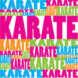 Karate colorido escultura fotográfica