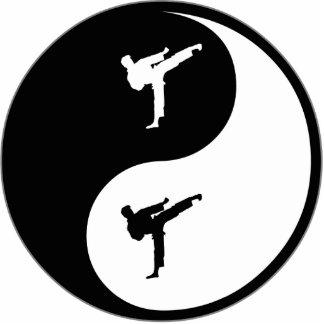Karate de Yin Yang Esculturas Fotograficas