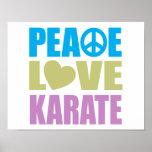 Karate del amor de la paz posters
