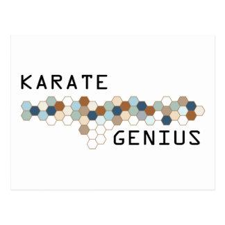 Karate Genius Postcard