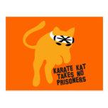 Karate KAT (cat) takes no prisoners Post Card