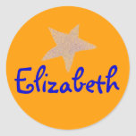 Karate Kat gold star ID--to personalize Round Stickers