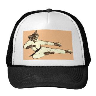 Karate Kat Gorras
