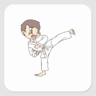 KARATE KID SQUARE STICKERS