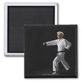 Karate master demonstrating, studio shot magnet