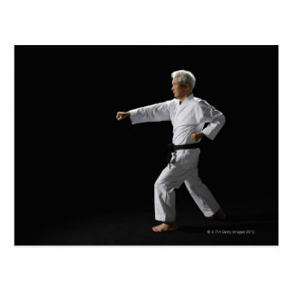 Karate master demonstrating, studio shot postcard