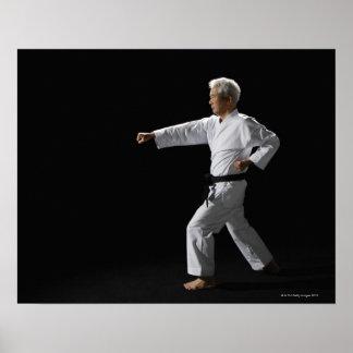 Karate master demonstrating, studio shot poster