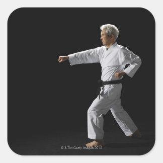 Karate master demonstrating, studio shot square sticker