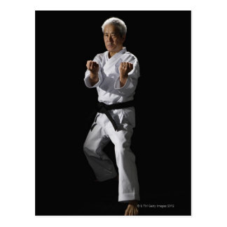 Karate master, portrait, studio shot 2 postcard