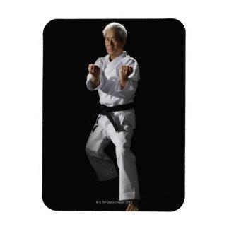 Karate master, portrait, studio shot 2 flexible magnets