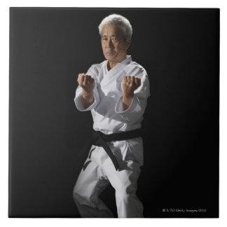 Karate master, portrait, studio shot 2 tile