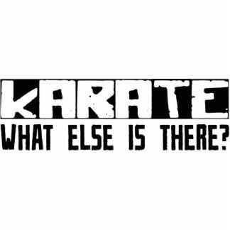 ¿Karate qué más está allí? Escultura Fotográfica
