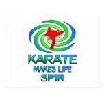 Karate Spins Postcard